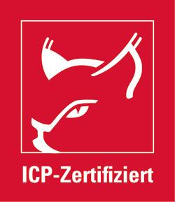 icp-logo-unsere-leistungen